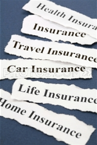 Do you have career insurance?