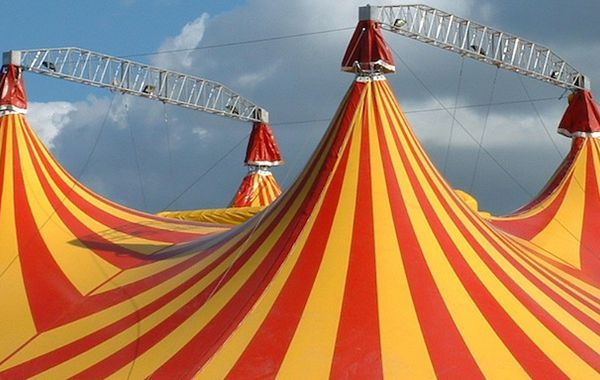 tent pole  sc 1 st  Dorothy Dalton & Portfolio careers: What are your tent-pole skills? - Dorothy Dalton